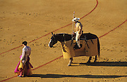"""Tercio de varas. First stage of Spanish bullfight where picadors on horseback place banderillas, barbed sticks into the bulls back..Bullfighting in Sevilla's famous bullring """"La Real Maestranza"""" is a significant part of the Feria de Abril..The Feria de abril de Sevilla, """"Seville April Fair"""" dates back to 1847. During the 1920s, the feria reached its peak and became the spectacle that it is today. It is held in the Andalusian capital of Seville in Spain. The fair generally begins two weeks after the Semana Santa, Easter Holy Week. The fair officially begins at midnight on Monday, and runs six days, ending on the following Sunday. Each day the fiesta begins with the parade of carriages and riders, at midday, carrying Seville's citizens to the bullring, La Real Maestranza. Seville. Andalusia. Spain...Blood sport ending in the killing of a bull in front of thousands of spectators. An entertainment and tradition derived from the ancient gladiatorial spectacles of Roman times. This activity is loved and defended by 'affecionados' who see the artistry and traditions whilst it is detested by animal rights activists, environmentalist and ecologists for its cruelty to animals"""