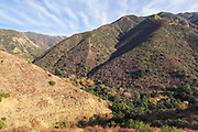 Rugged Landscape of the Santa Ana Mountains