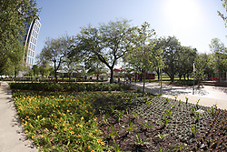 Stock photo of new flowers and foliage planted along the edges of the park