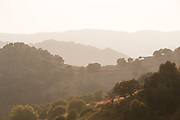 Summer rural landscape with small house on hill at foggy sunset, Lesbos, Greece
