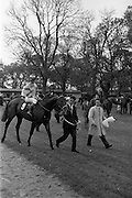 "08/05/1965<br /> 05/08/1965<br /> 08 May 1965<br /> The 1965 Gold Flake Meeting at Leopardstown Racecourse, Co. Dublin. Image shows the Countess de la Valdene's ""Donato"" (Jack M. Purtell up) winner of the Wills Gold Flake Stakes being led in after the race."
