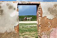 Horse in Gibara, Holguin, Cuba.