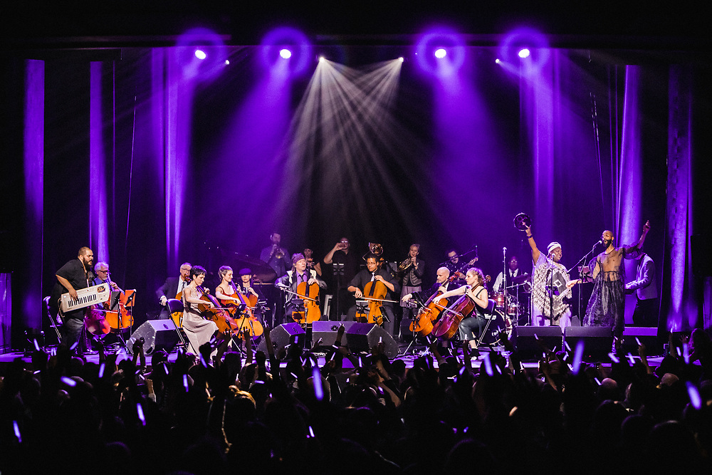 """Portland Cello Project """"Purple Reign"""" Prince tribute show at Revolution Hall, Dec. 9, 2019. Photo by Jason Quigley."""