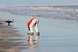 Photographer and birds on beach on Gulf of Mexico, Galveston Island State Park, Galveston, Texas, USA