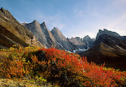 Gates of the Arctic National Park, AK, USA.<br /> The Arrigetch Peaks at Sunset.<br /> Dwarf Birch is red and Willow is yellow in the fall.<br /> 150 Miles above the Arctic Circle.
