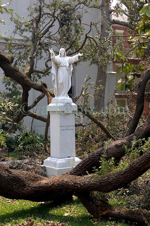 03 Sept  2005. New Orleans, Louisiana. Post hurricane Katrina.<br /> A statue of Jesus stands untouched, surrounded by smashed trees behind the St Louis Cathedral in the French Quarter.<br /> Photo Credit ©: Charlie Varley/varleypix.com