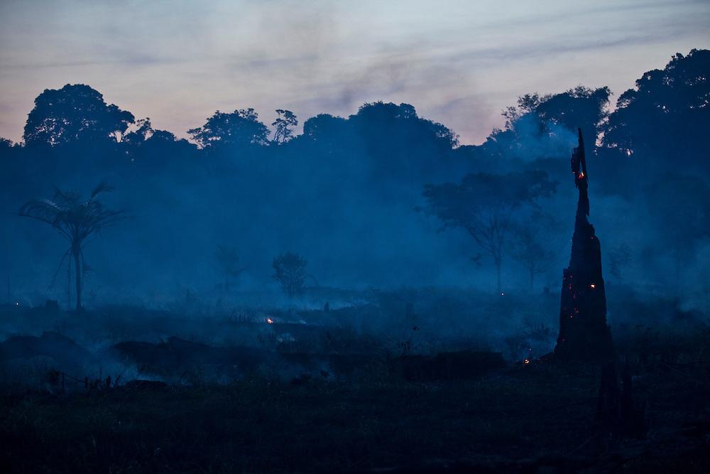 Parintins_AM, 16 de novembro de 2012.<br /> <br /> Educacao Ambiental do programa de Conservacao do Gaviao Real em comunidades do assentamento Vila Amazonia.<br /> <br /> Foto: JOAO MARCOS ROSA / NITRO