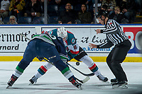 KELOWNA, CANADA - FEBRUARY 23: Linesman Dustin Minty drops the puck at the face off between Jack Cowell #8 of the Kelowna Rockets and Zack Andrusiak #20 of the Seattle Thunderbirds  on February 23, 2018 at Prospera Place in Kelowna, British Columbia, Canada.  (Photo by Marissa Baecker/Shoot the Breeze)  *** Local Caption ***