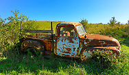 Old Chevy Workhorse put out to pasture. Photo taken October 28, 2019.