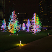 L'annuale edizione del festival delle luci a Canary Wharf, una mostra all'aperto di installazioni luminose. Sasha Trees di Adam Decolight<br /> <br /> The yearly edition of the lights festival in Canary Wharf, an open-air exhibition of light installations. Sasha Trees by Adam Decolight.