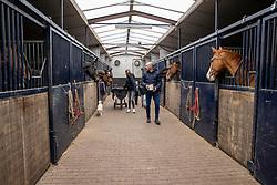 Stal Knijnenburg - Deurne 2021<br /> © Hippo Foto - Dirk Caremans<br /> 21/03/2021