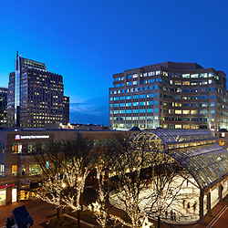 Reston Town Center Skyline with Holiday Lights  Northern Virginia