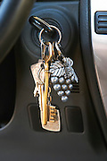 Car keys on a key ring with a grape bunch with leaf as decoration. Domaine Gerard Bertrand, Chateau l'Hospitalet. La Clape. Languedoc. France. Europe.
