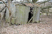 Broken remains of old wooden shepherd's travelling shed, Sutton, Suffolk