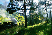 Smoke from engine 482 fills the trees during a stop of the Durango & Silverton Narrow Gauge Railroad in the San Juan National Forest, midway between Durango and Silverton, Colorado.