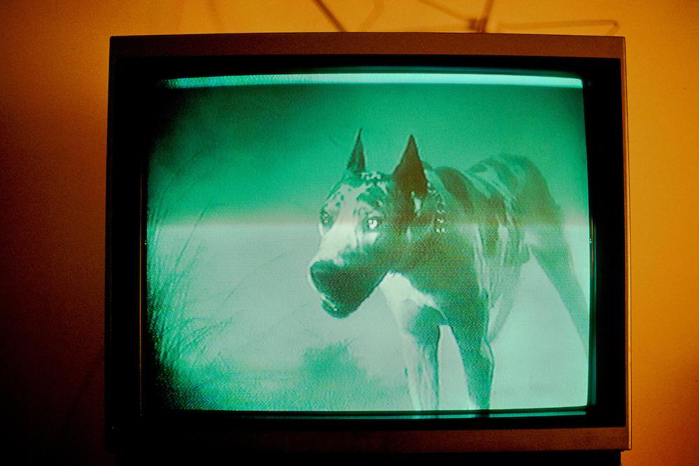 Imagined film stills taken while watching Jane Eyre on video cassette