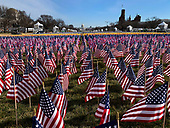 DC: Inauguration Field of Flags