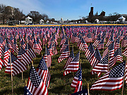 """On the day after the inauguration, the """"Field of Flags"""" was removed from the National Mall. Nearly 200,000 flags was planted on the Mall to fill in for the thousands of people who could not attend because of the coronavirus pandemic and tight security. They represented the 50 states, the District of Columbia, and the five U.S. territories of American Samoa, Guam, Northern Mariana Islands, Puerto Rico and the U.S. Virgin Islands."""