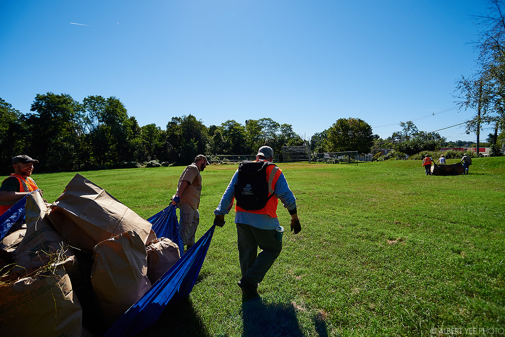 Volunteers and Friends of the Wissahickon staff help clear mile-a-minute, porcelain berry, and pokeberry, among other invasive plants from the landscape.<br /> <br /> September 25, 2021