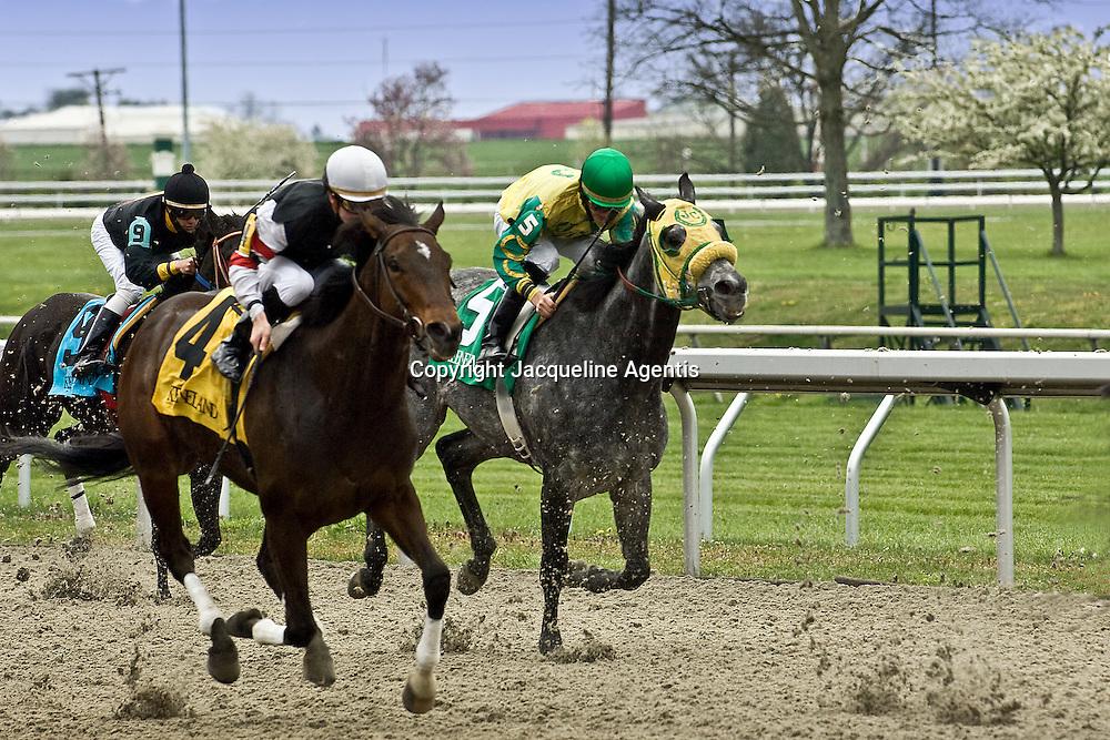 Horse Race at Keeneland Racetrack. 3:11:57 PM, 04/20/08.  Lexington, KY.