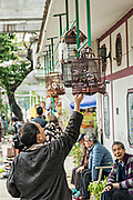 Bird enthusiasts show off their exotic birds at the Yuen Po Street Bird Garden in Mong Kok, Kowloon, Hong Kong.