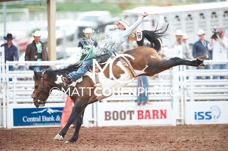 Bareback rider David Clapp of Sedalia, MO rides Table Top at the Pikes Peak or Bust Rodeo in Colorado Springs, CO.<br /> <br /> <br /> UNEDITED LOW-RES PREVIEW<br /> <br /> <br /> File shown may be an unedited low resolution version used as a proof only. All prints are 100% guaranteed for quality. Sizes 8x10+ come with a version for personal social media. I am currently not selling downloads for commercial/brand use.