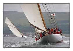 Altair 1931 Schooner follows Mariquita toward the Largs shore...The final day's racing on the King's Course North of Cumbrae...* The Fife Yachts are one of the world's most prestigious group of Classic .yachts and this will be the third private regatta following the success of the 98, .and 03 events.  .A pilgrimage to their birthplace of these historic yachts, the 'Stradivarius' of .sail, from Scotland's pre-eminent yacht designer and builder, William Fife III, .on the Clyde 20th -27th June.   . ..More information is available on the website: www.fiferegatta.com . .Press office contact: 01475 689100         Lynda Melvin or Paul Jeffes