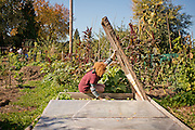 Gardener Suzanne is a full time gardening teacher at New Day School in Portland, Oregon.