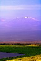Mount Kilimanjaro viewed from Amboseli National Park, Kenya