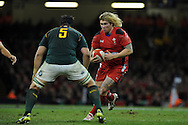 Richard Hibbard of Wales looks to go past Flip Van Der Merwe. Autumn International rugby, 2013 Dove men series, Wales v South Africa at the Millennium Stadium in Cardiff,  South Wales on Saturday 9th November 2013. pic by Andrew Orchard, Andrew Orchard sports photography,