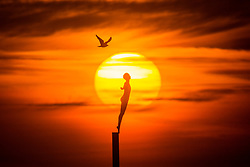 © Licensed to London News Pictures. 24/02/2018. Scarborough UK. The sun rises this morning behind the Diving Bell sculpture on St Vincent Pier in Scarborough as the UK prepares for the big freeze in the coming days. Photo credit: Andrew McCaren/LNP