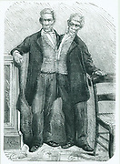 Siamese or conjoined twins. Chang and Eng, (1811-1874) born in Thailand, it is from these brothers that we derive the popular term Siamese twins. Engraving from 'La Nature' (Paris, 14 March 1874).
