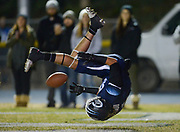 Camarillo's Frankie Tostado flips into the end zone for a touchdown against Bishop Diego during the CIF-Southern Section Northern Division semifinals at Adolfo Camarillo High School on Nov 27, 2015.