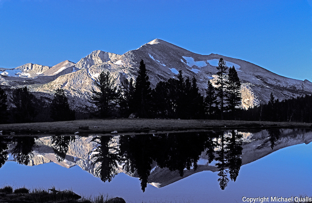 An early morning in Dana Meadows - Mt. May.  Yosemite, NP.  USA.