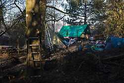 Harefield, UK. 19 January, 2020. Part of Save the Colne Valley and Stop HS2's Colne Valley wildlife protection camp. Activists from Extinction Rebellion, Stop HS2 and Save the Colne Valley attending a 'Stand for the Trees' event timed to coincide with tree felling work for HS2 have retaken the camp from which activists had been evicted by bailiffs acting for HS2 over the past week and a half. The bailiffs had removed the lower branches of trees so that activists could not easily climb them. 108 ancient woodlands are set to be destroyed by the high-speed rail link.