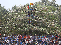 July 29, 2018 - Dambulla, Sri Lanka - The crowd watch the match on trees during the 1st One Day International cricket match between Sri Lanka and South Africa at Rangiri Dambulla International Stadium, Dambulla, Sri Lanka on Sunday 29 July 2018  (Credit Image: © Tharaka Basnayaka/NurPhoto via ZUMA Press)