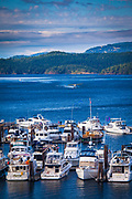 Seaplane taking off in the marina at Friday Harbor on San Juan Island