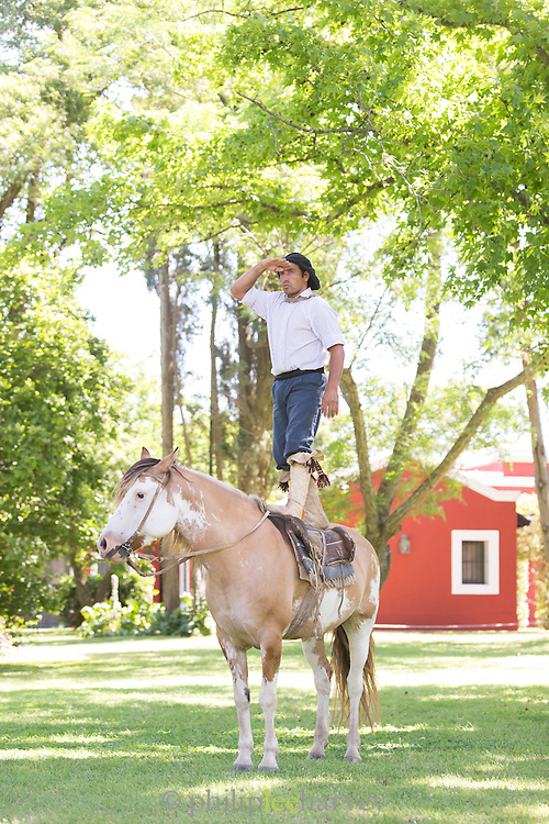 Gaucho stands on horseback, Estancia La Bamba De Areco, Pampas, Argentina, South America