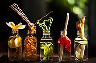 Food Lab Oil display 3