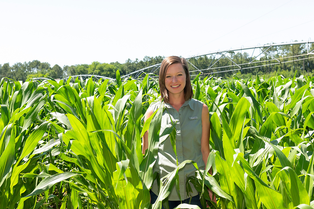 Casey Cox is the sixth generation of her family to farm along the Flint River in Camilla, Georgia, Mitchell county. The Longleaf Ridge Farms grows field corn (seen here), sweet corn, soybeans, peanuts and timber.