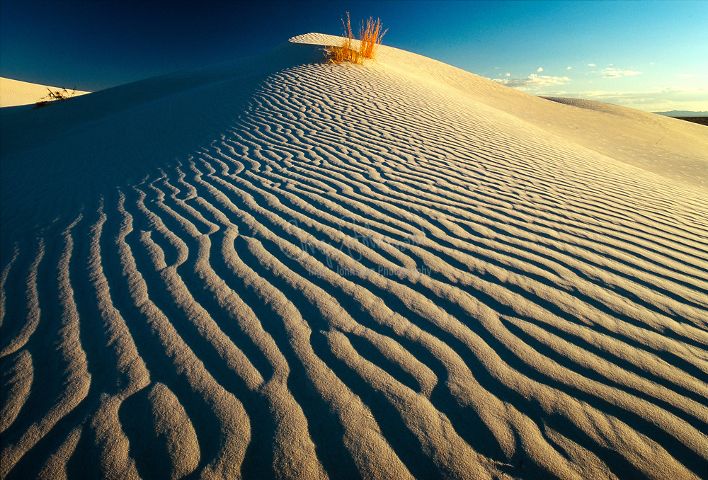 Sand dune in Guadalupe Dune in western Texas