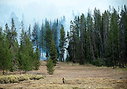 PRICE CHAMBERS / NEWS&GUIDE<br /> Smoke fills the air as a lone firefighter walks out of the Little Horsethief wildfire in Leeks Canyon on Tuesday as hundreds of others work to contain the blaze that began Saturday in Wilson Canyon.