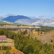 fall colorsand glacier national park, amtrak train on two medicine bridge,