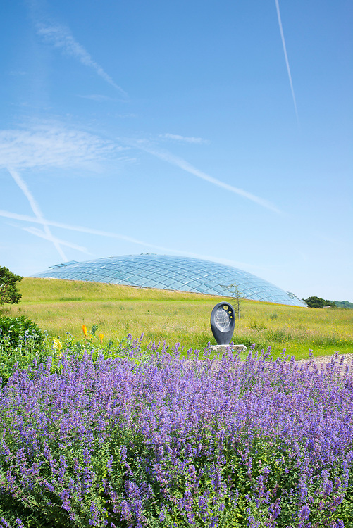 Dome shaped glass roof of The Great Glasshouse of the National Botanic Garden of Wales and 'Osmunda' living fossil sculpture by Glenn Morris