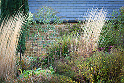 Seedheads and grasses in a late autumn border at Pettifers