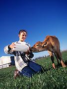Girl feeding calf