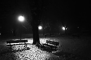 """fog in a park.<br /> The shadow line is a trip, a trip losing myself, looking for myself.<br /> Like the romance """"the shadow line"""" by Joseph Conrad (1917).<br /> I was in Italy, England, Bosnia, Montenegro, Serbia..<br /> It isn't a reportage, it isn't a story.<br /> It is a searching.."""