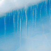 Clear icicles hang down from a ledge of a blue Antarctic iceberg.