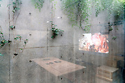 underground space floor to ceiling window with raw concrete wall and green plants at the Loko Gallery in Tokyo
