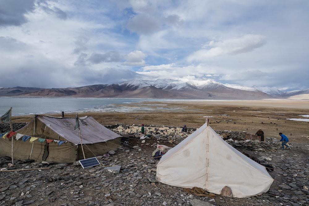 A Tibetan nomad camp near the shores of Tso Kar lake, Ladakh